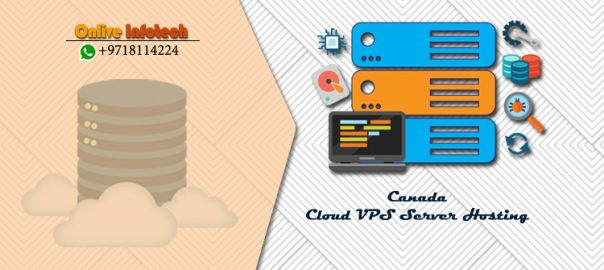 Why Canada VPS Hosting Preferred by Small Business? Onlive Infotech