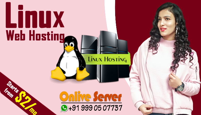 How Web Hosting Solution Important In Today's World